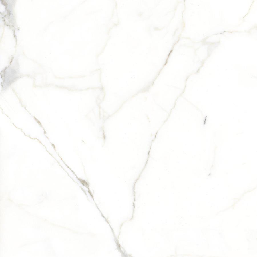 Select White Calacatta
